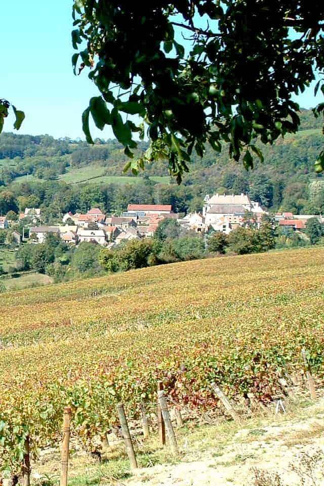 Maison Louis Bonnard wijngaarden en dorp Wijnhandel Smit