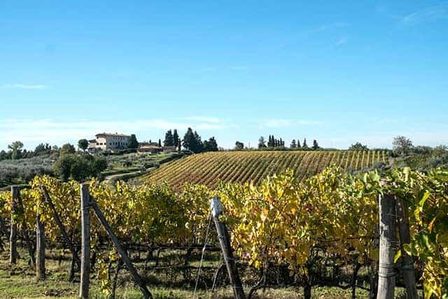 Tenuta Orsumella Wijnhandel Smit
